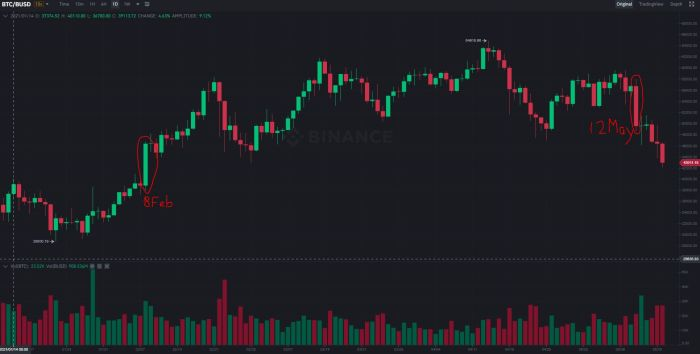 Bitcoin after Elon's tweets
